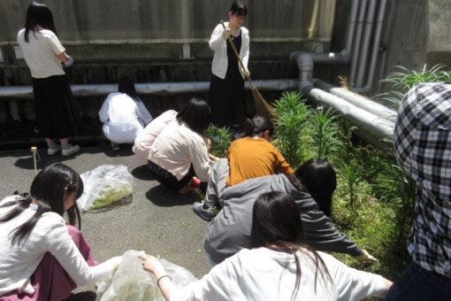 【生命栄養科学科】マナーアップキャンペーン