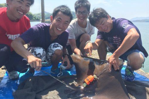 【海洋生物科学科】野外調査の様子がテレビ放送