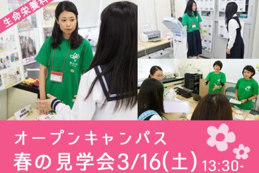 【生命栄養科学科】春の見学会の一部をご紹介!