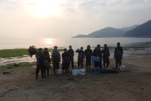 【海洋生物科学科】因島大浜での藻場調査