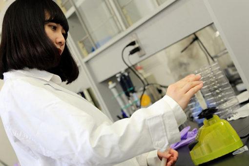【生物工学科】ひと味違う!生物工学科のオープンキャンパス