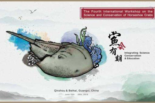 【海洋生物科学科】国際ワークショップ「カブトガニの科学と保護」へ参加