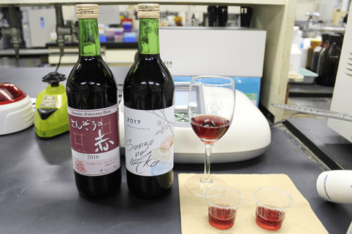 【生物工学科】バイオテクノロジーとワイン