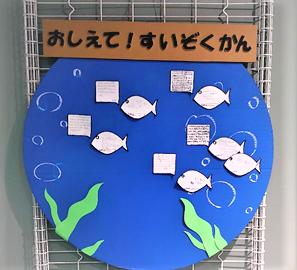 【海洋生物科学科】水族館に新コーナーが登場!!
