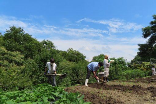 【生物工学科】バイオテクノロジーの始まりは農作業から