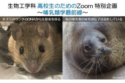 【生物工学科】10/18(日)高校生のための哺乳類学最前線