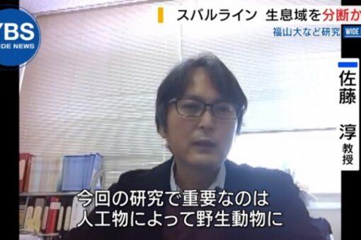 【生物工学科】佐藤教授 山梨放送の番組に登場