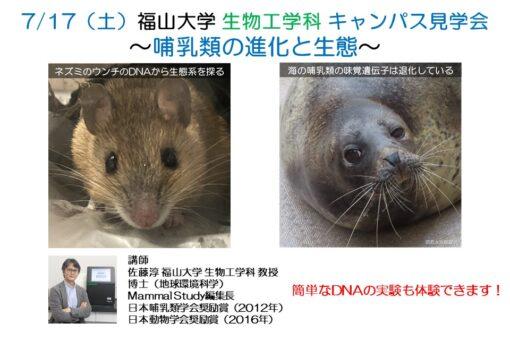 【生物工学科】キャンパス見学会で哺乳類の進化と生態を学びませんか?
